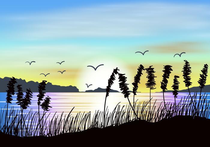 Vista del tramonto dell'avena del mare vettore
