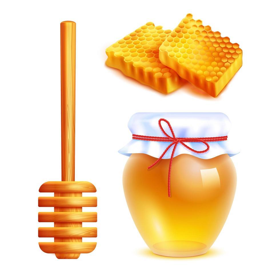 set di miele realistico vettore