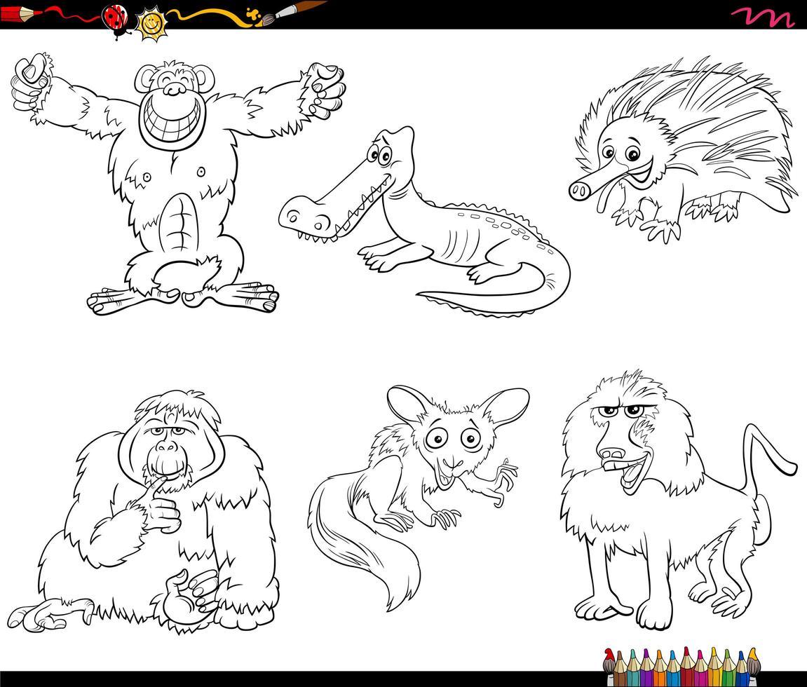 personaggi dei cartoni animati di uccelli impostare la pagina del libro da colorare vettore