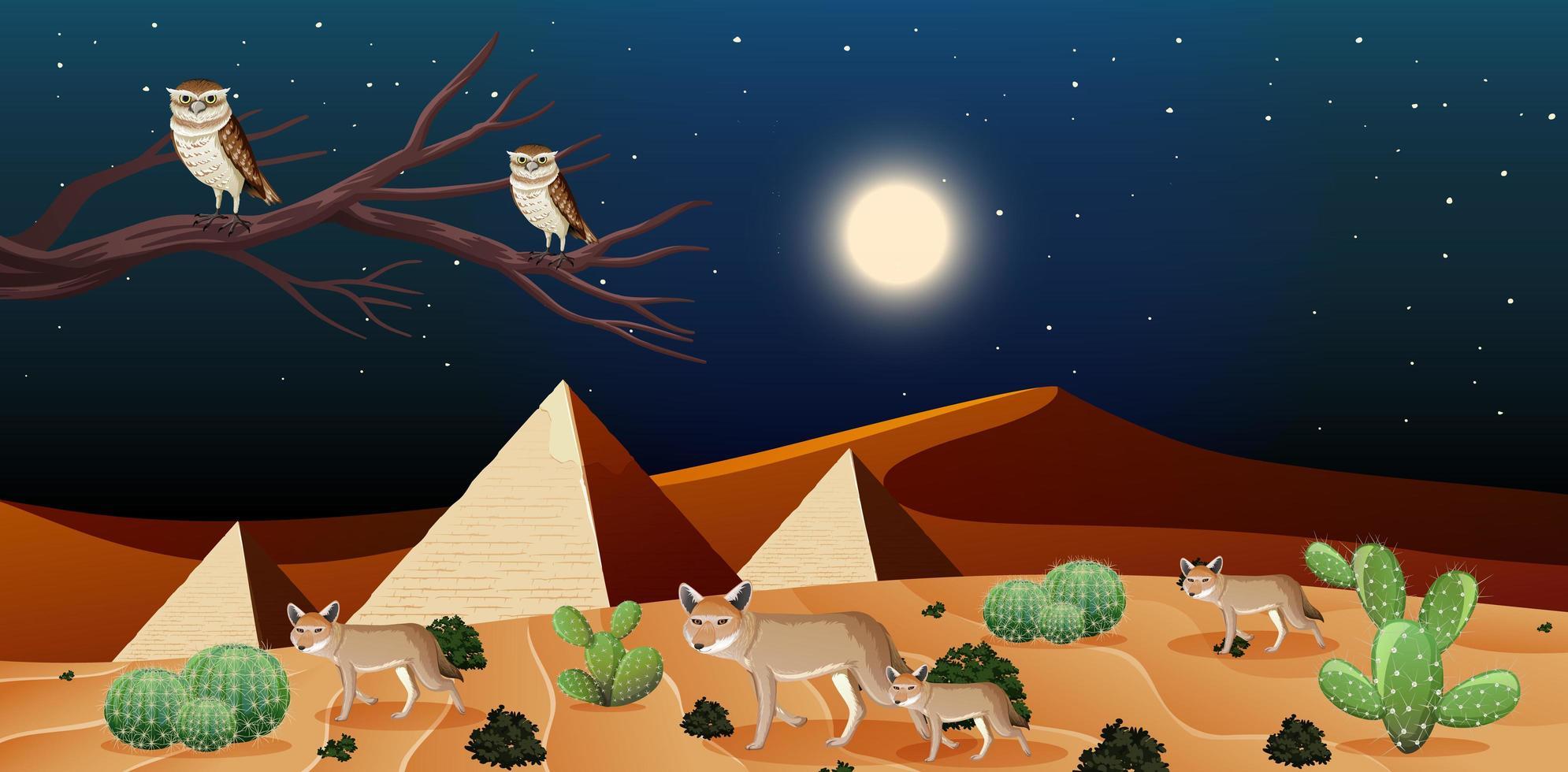 paesaggio desertico selvaggio di scena notturna con piramidi vettore