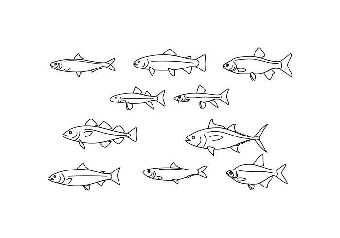Vettore libero dell'illustrazione di linea del pesce