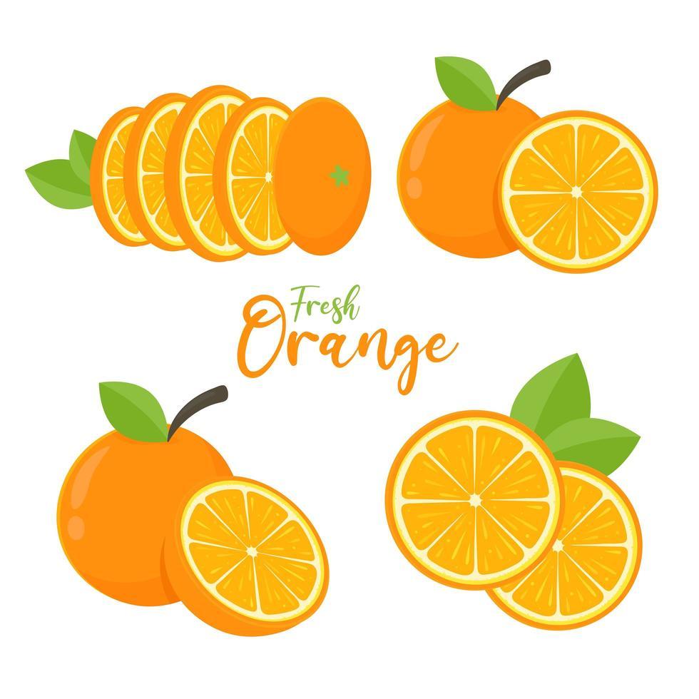 set di frutta arancione vettore