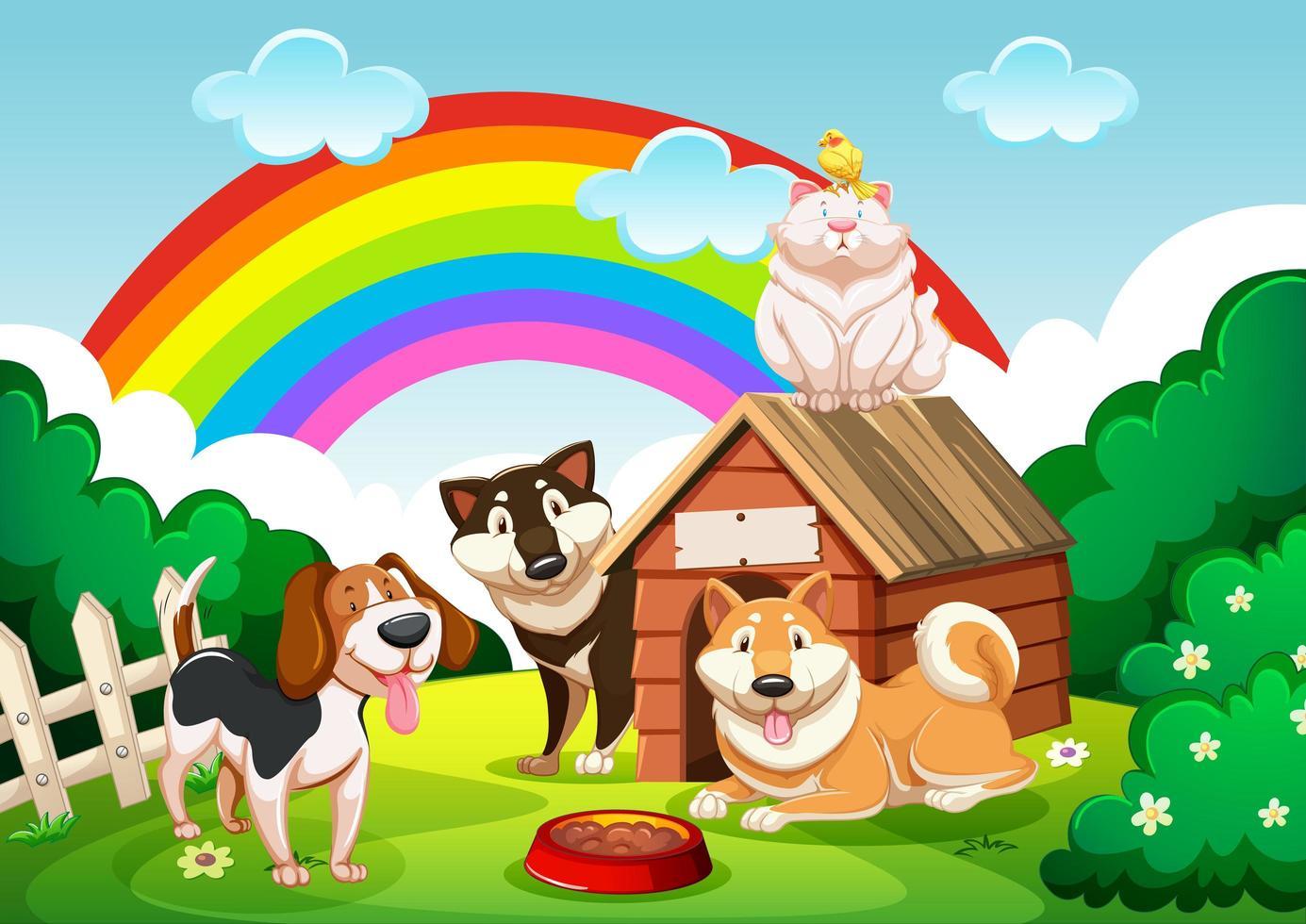 gruppo di cani e un gatto in giardino con scena arcobaleno vettore