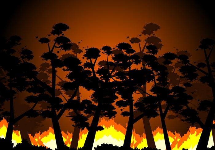 Foresta che brucia vettoriali gratis