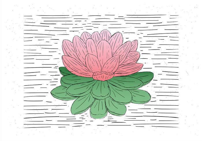 Illustrazione del fiore vettoriale disegnato a mano libera