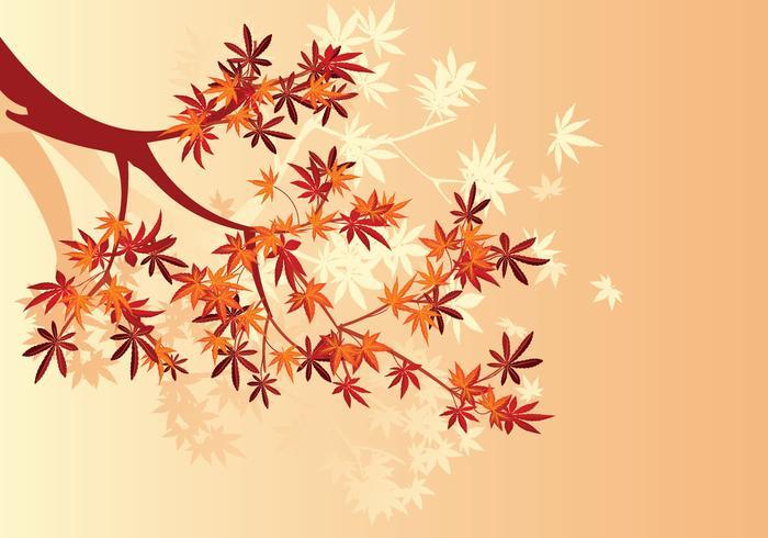 Liscio acero giapponese pianta e caduta foglie d'acero sfondo vettore