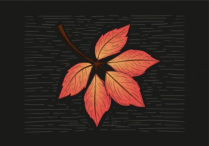 Illustrazione disegnata a mano libera foglia d'autunno vettore