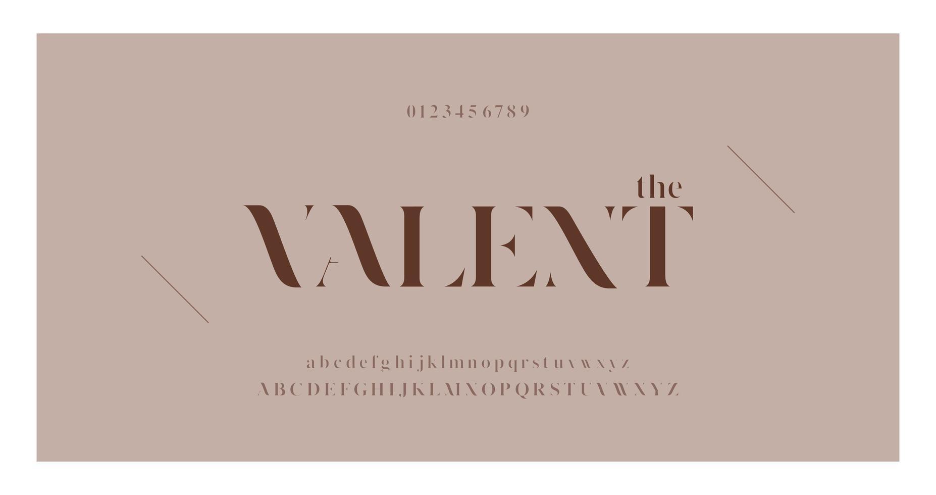 carattere di moda elegante con lettere e numeri vettore