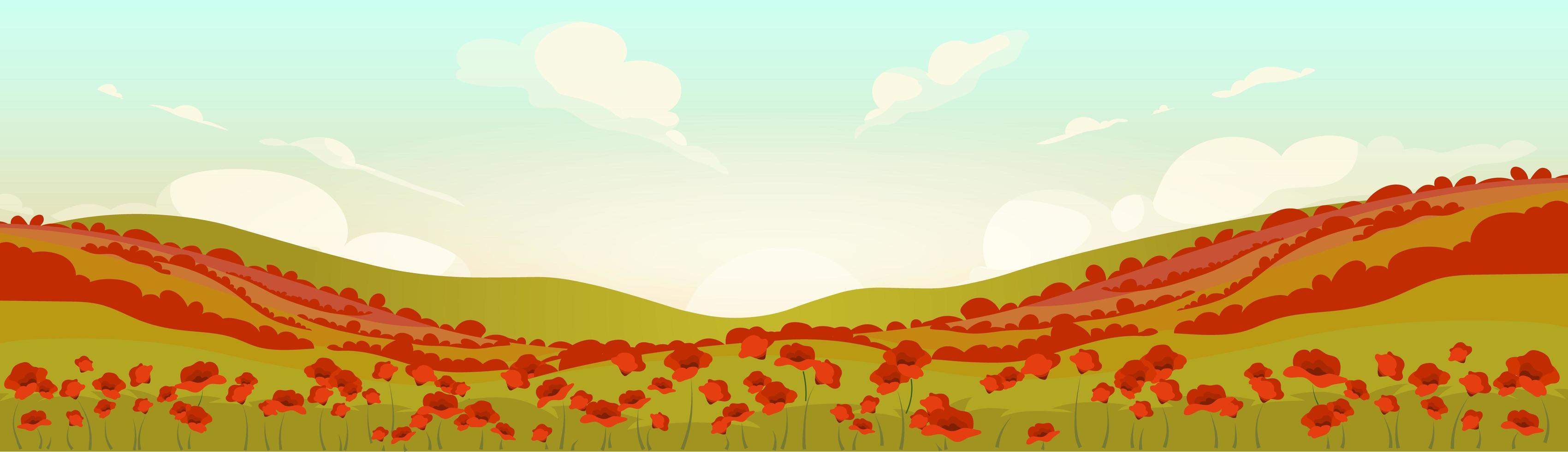 campo di papaveri toscani all'alba vettore