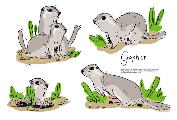 Illustrazione disegnata a mano di vettore di Gopher Pose sveglio