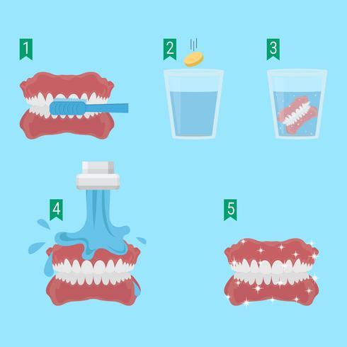 Come lavare i denti falsi Vector Illustration