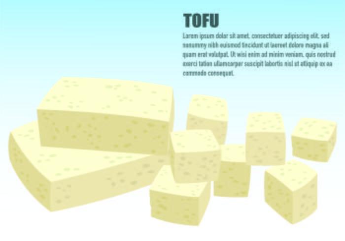 Illustrazione Del Concetto Di Tofu vettore
