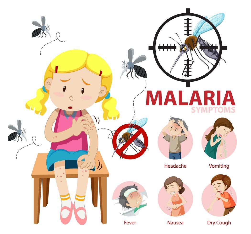 infografica di informazioni sui sintomi della malaria vettore