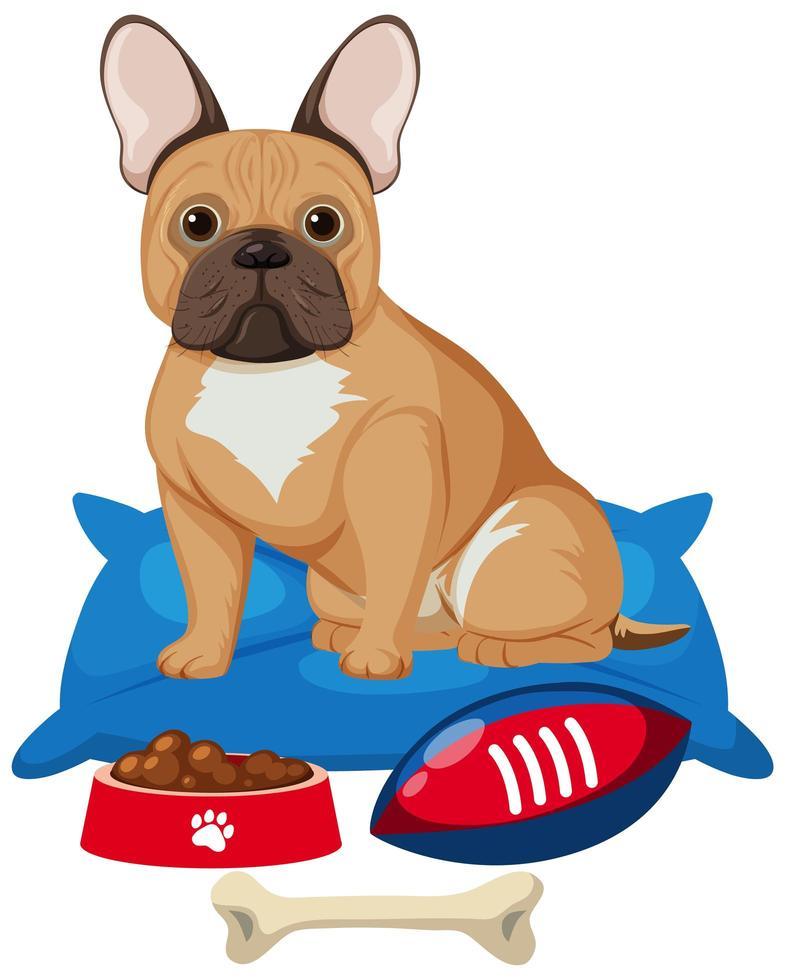 Bulldog francese con cibo per cani e osso giocattolo su sfondo bianco vettore