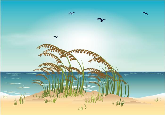 Illustrazione vettoriale di mare avena spiaggia