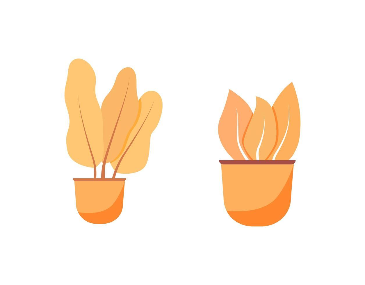 set di oggetti piatti arancione pianta d'appartamento vettore