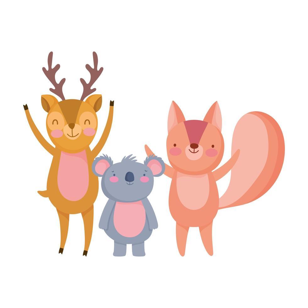simpatico personaggio dei cartoni animati di cervo koala e scoiattolo vettore