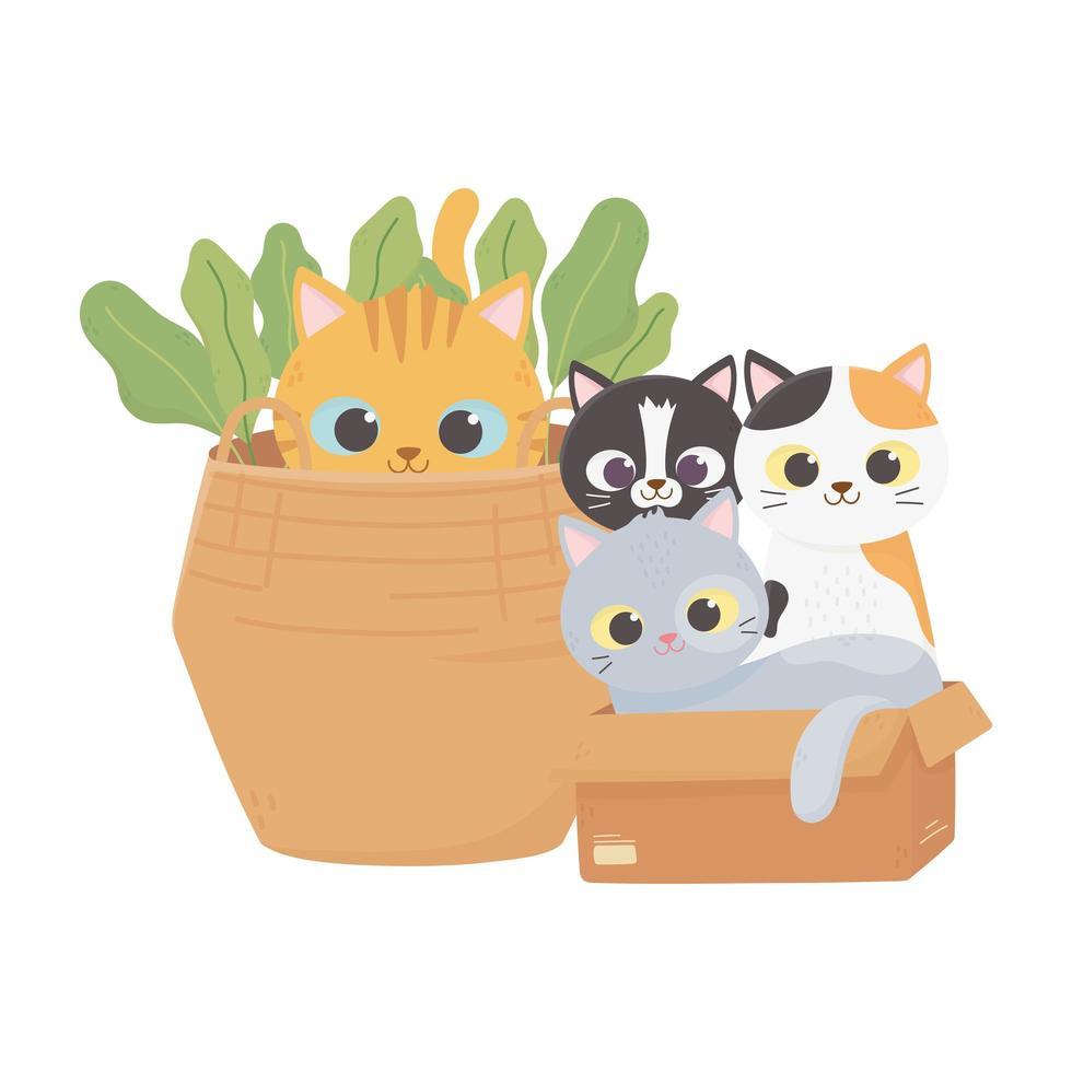 i gatti mi rendono felice, i gatti in una scatola di cartone e il gattino nel cestino dei cartoni animati vettore