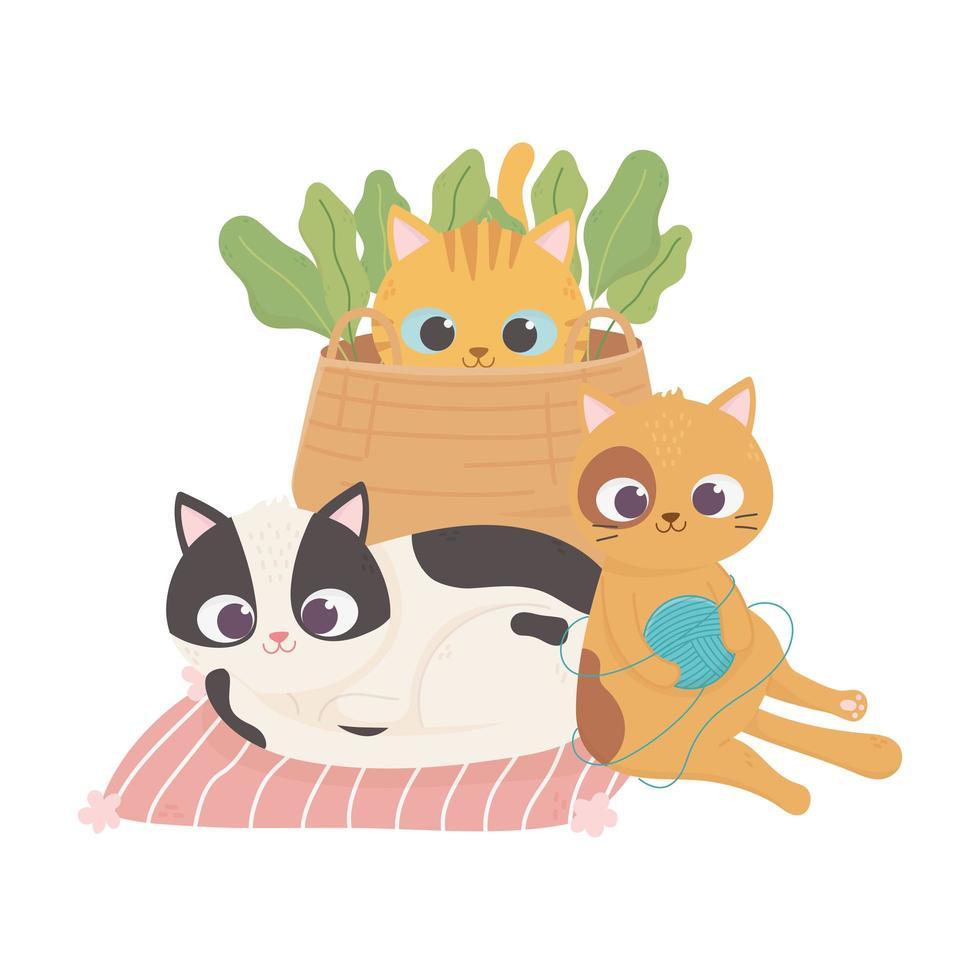 i gatti mi rendono felice, gatti carini con palla di lana da basket e razze diverse vettore