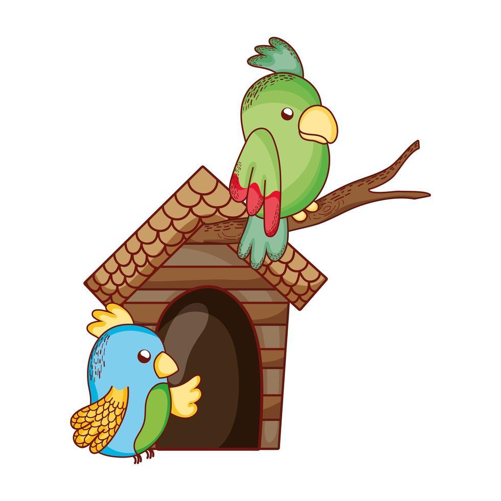 simpatici animali, pappagalli verdi e blu nel cartone animato di ramo vettore