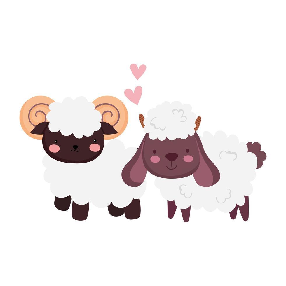 animali da fattoria capra e pecora amano i cuori dei cartoni animati vettore