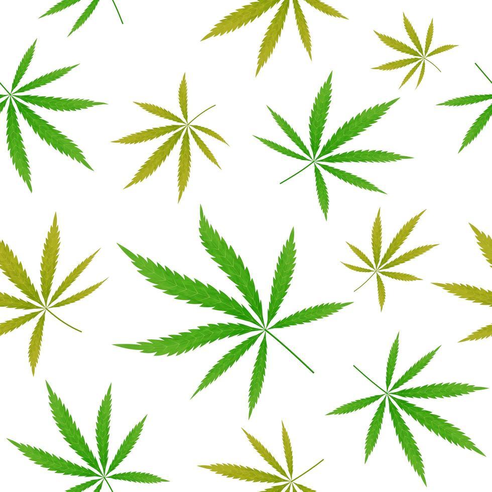 modello senza cuciture foglia verde cannabis vettore
