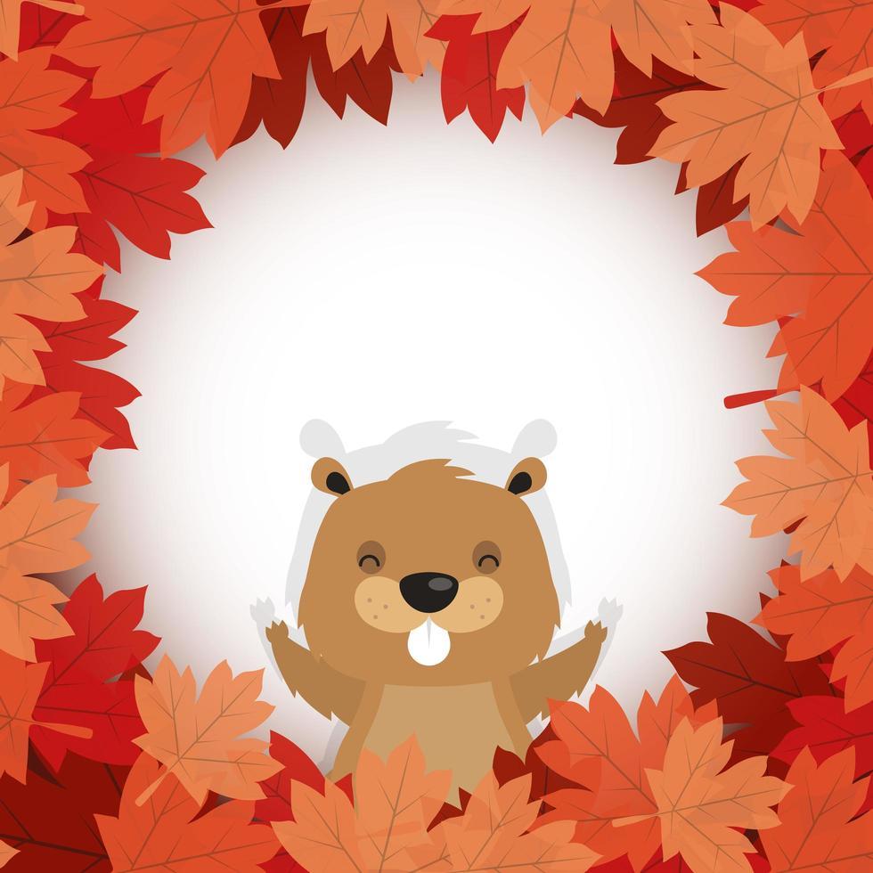 castoro canadese all'interno di foglie di autunno per il disegno vettoriale felice giorno del canada