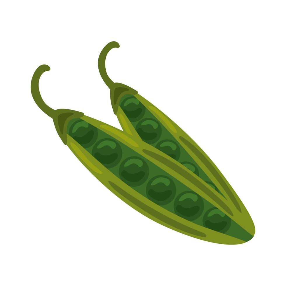 icona di cibo sano vegetale di fagioli freschi vettore