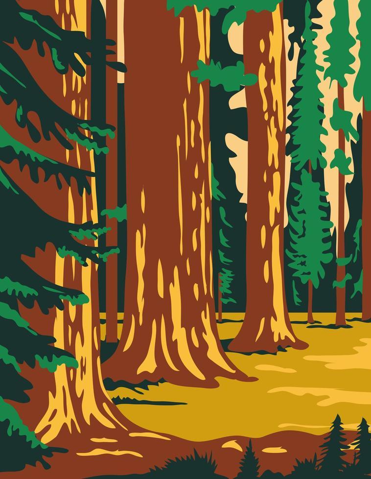 alberi di sequoia nel parco in sierra nevada california poster art vettore