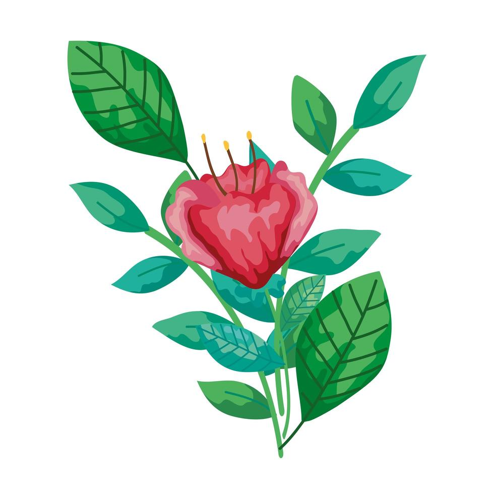 carino fiore rosso con ramo e foglie icona isolato vettore