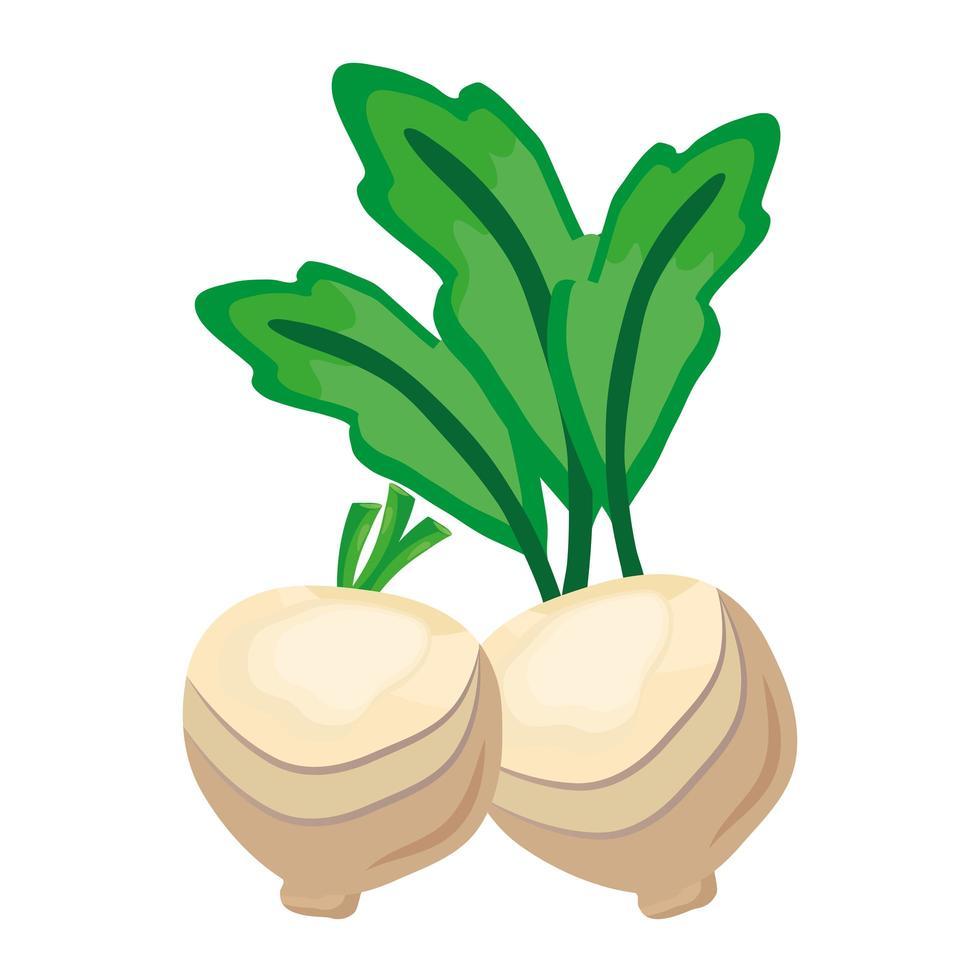 icona di cibo sano cipolle di verdure fresche vettore