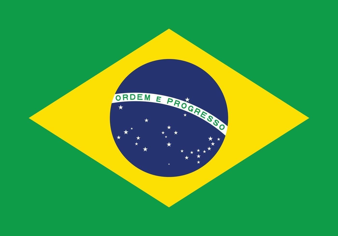 bandiera brasiliana vettore isolare banner stampa arte