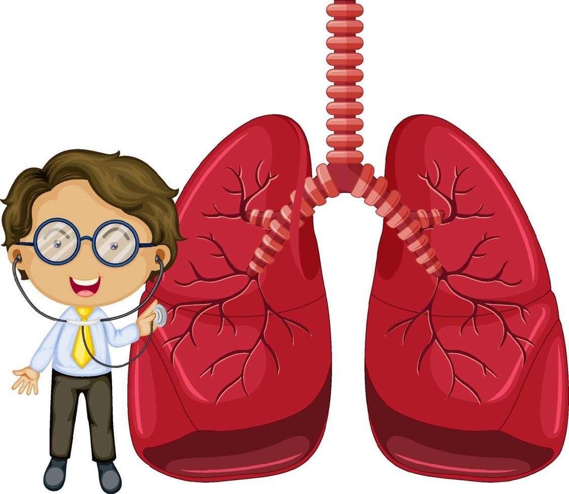 polmoni con un personaggio dei cartoni animati di medico vettore
