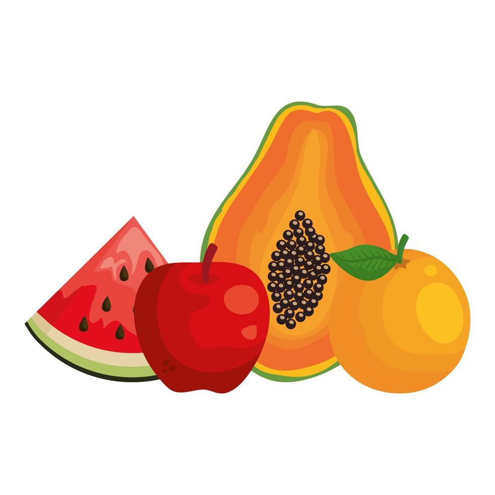 gruppo di frutta fresca cibo sano vettore