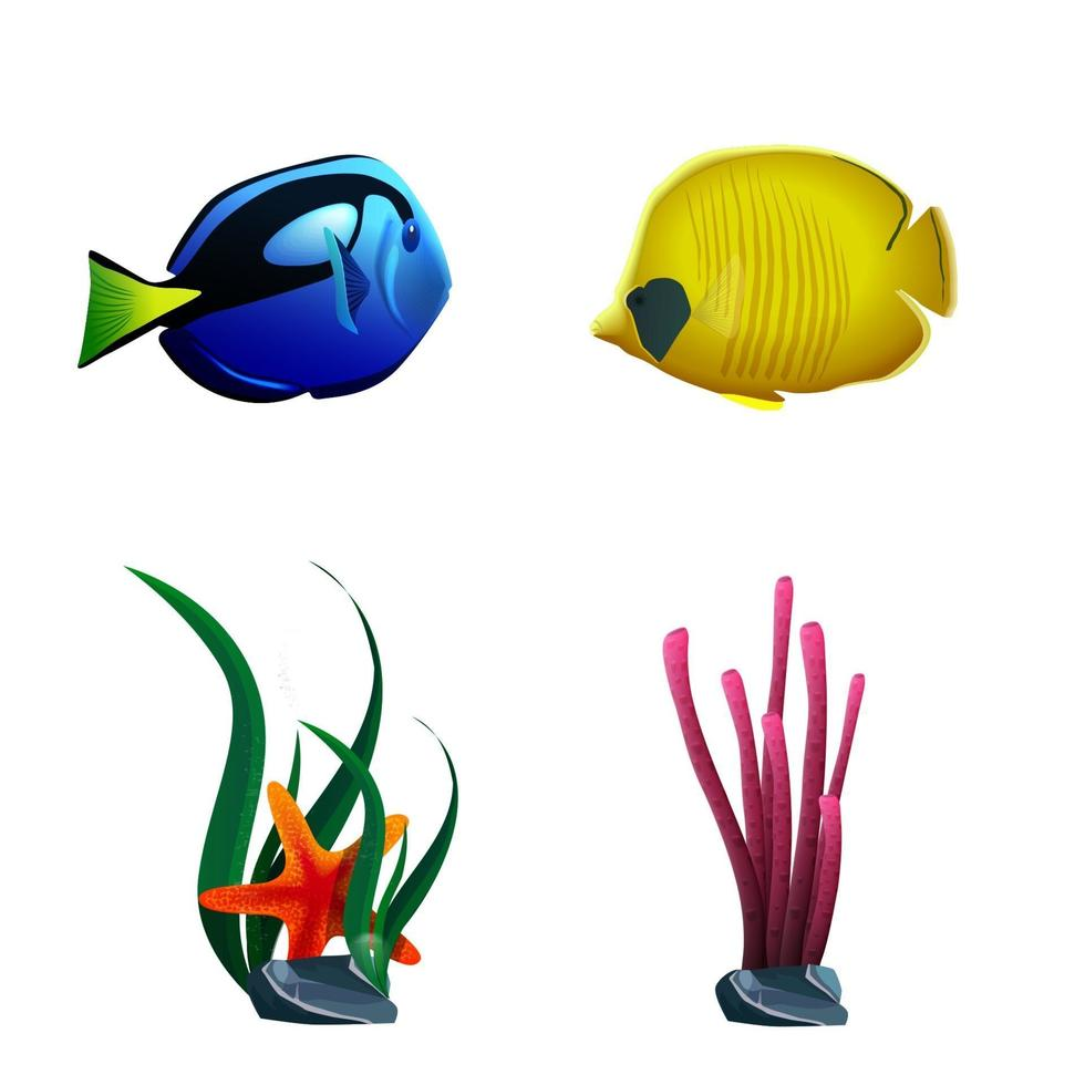 pesce di mare e piante isolate su priorità bassa bianca vettore