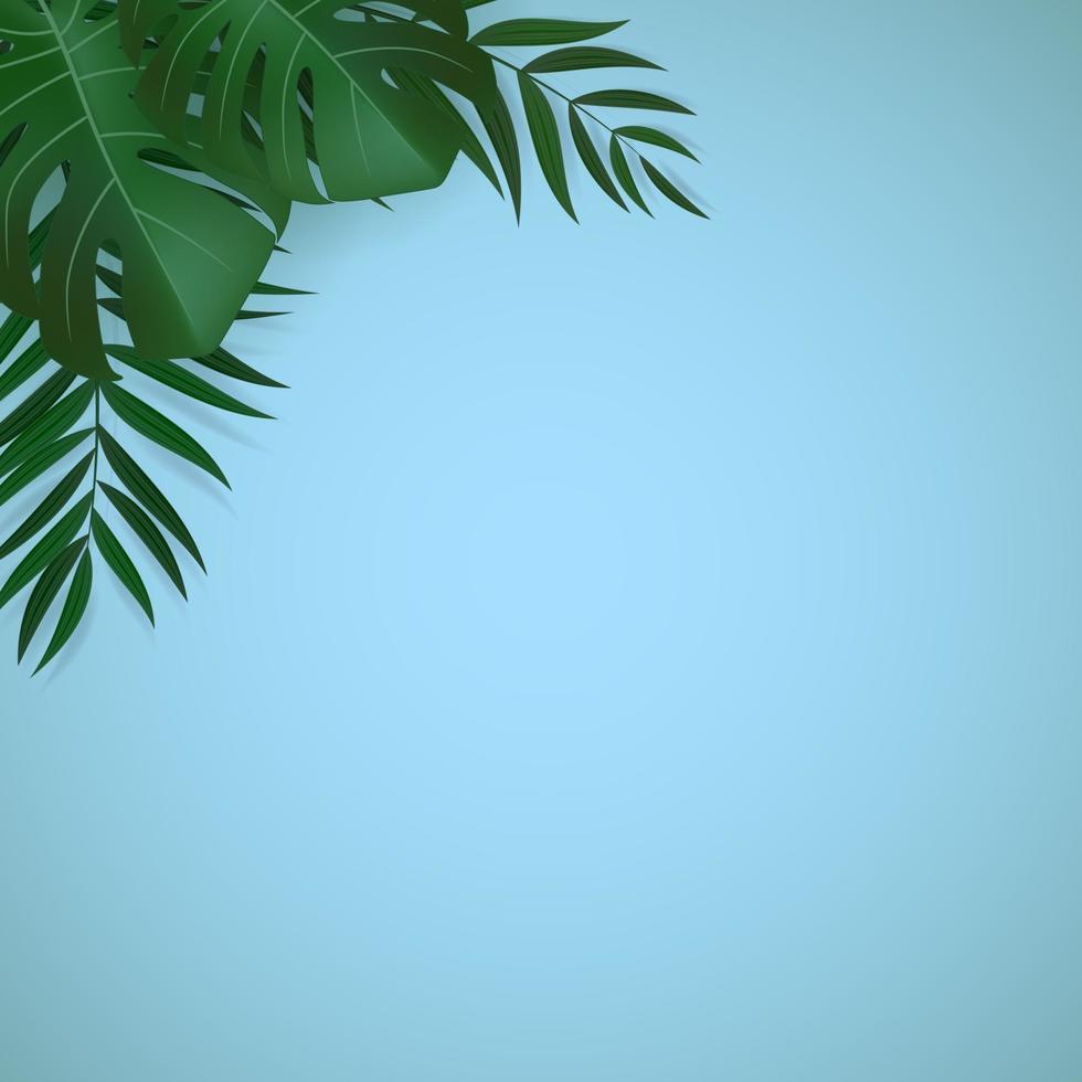 foglie di palma verde tropicale realistico naturale su sfondo blu vettore