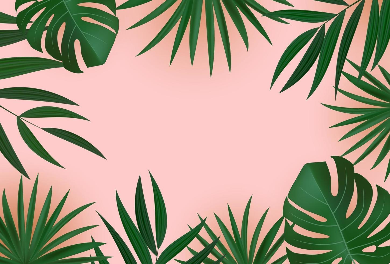 foglie di palma tropicali verdi realistiche astratte su sfondo rosa. vettore