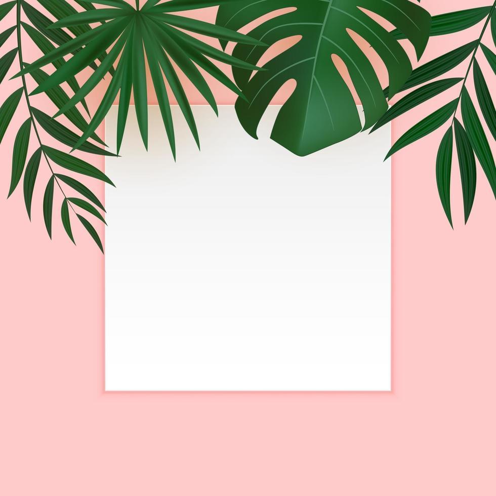 foglie di palma tropicali verdi realistiche astratte con cornice bianca vettore