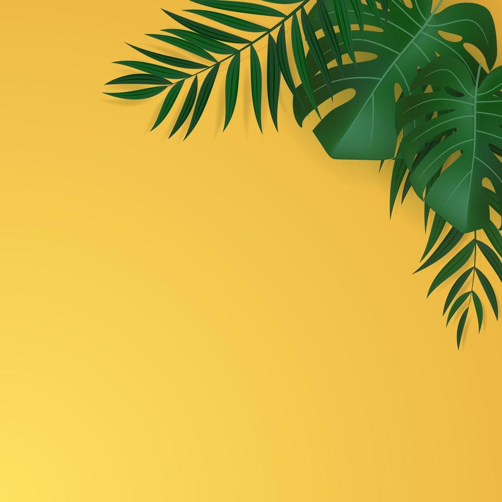 foglie di palma tropicali verdi realistiche naturali vettore
