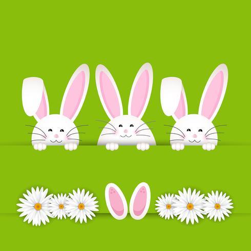 Sfondo del coniglietto di Pasqua vettore