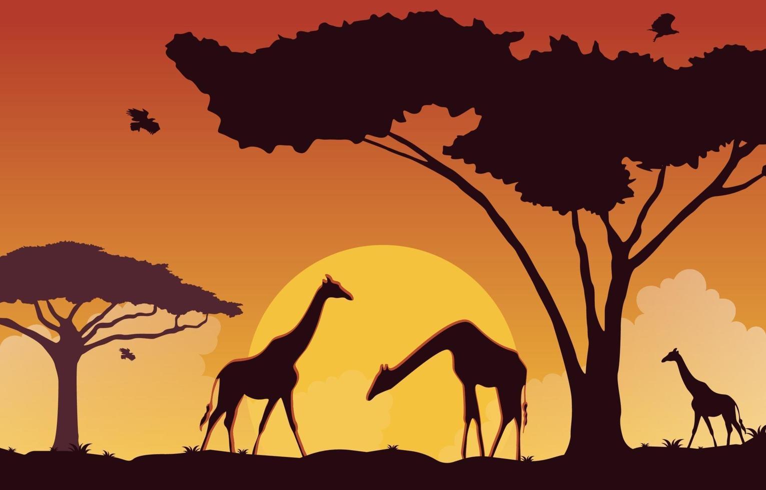giraffe nel paesaggio della savana africana all'illustrazione di tramonto vettore