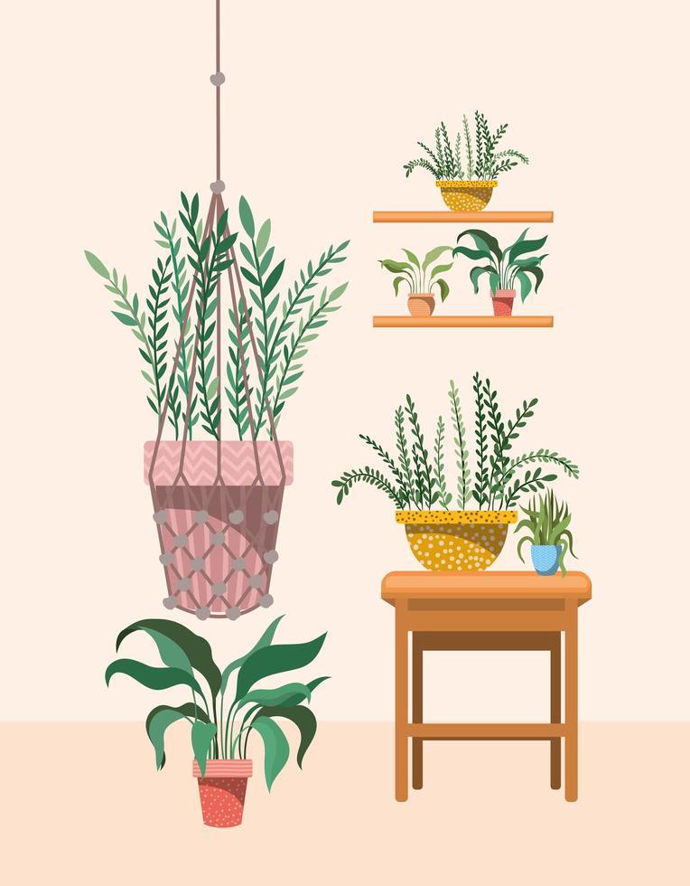 piante d'appartamento in appendiabiti e mensole in macramè vettore