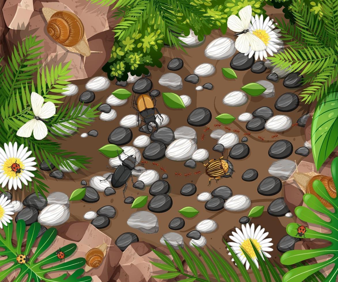 vista dall'alto di diversi tipi di insetti in giardino vettore