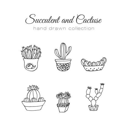 Illustrazione di cactus Insieme disegnato a mano di vettore succulente e cactus.