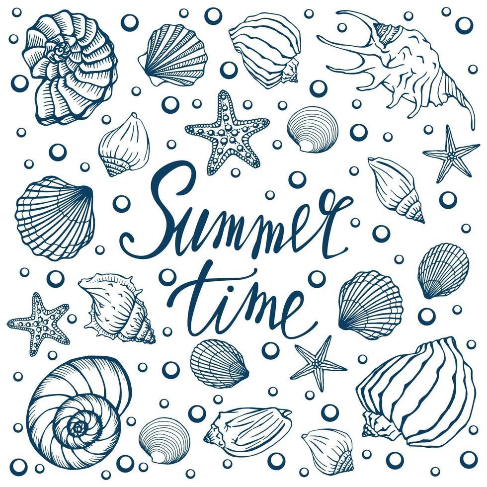 conchiglie, estate, vacanze, set di conchiglie e stelle marine, vettore. conchiglie e stelle marine disegnate a mano. bella iscrizione in calligrafia moderna. vettore