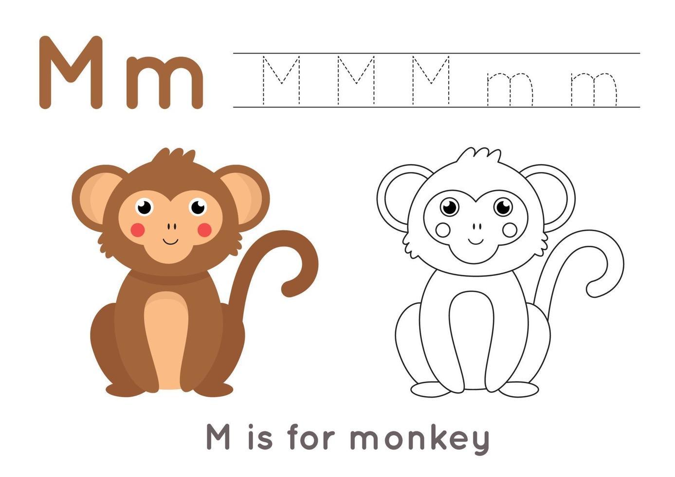 pagina da colorare e tracciare con la lettera m e una scimmia simpatico cartone animato. vettore