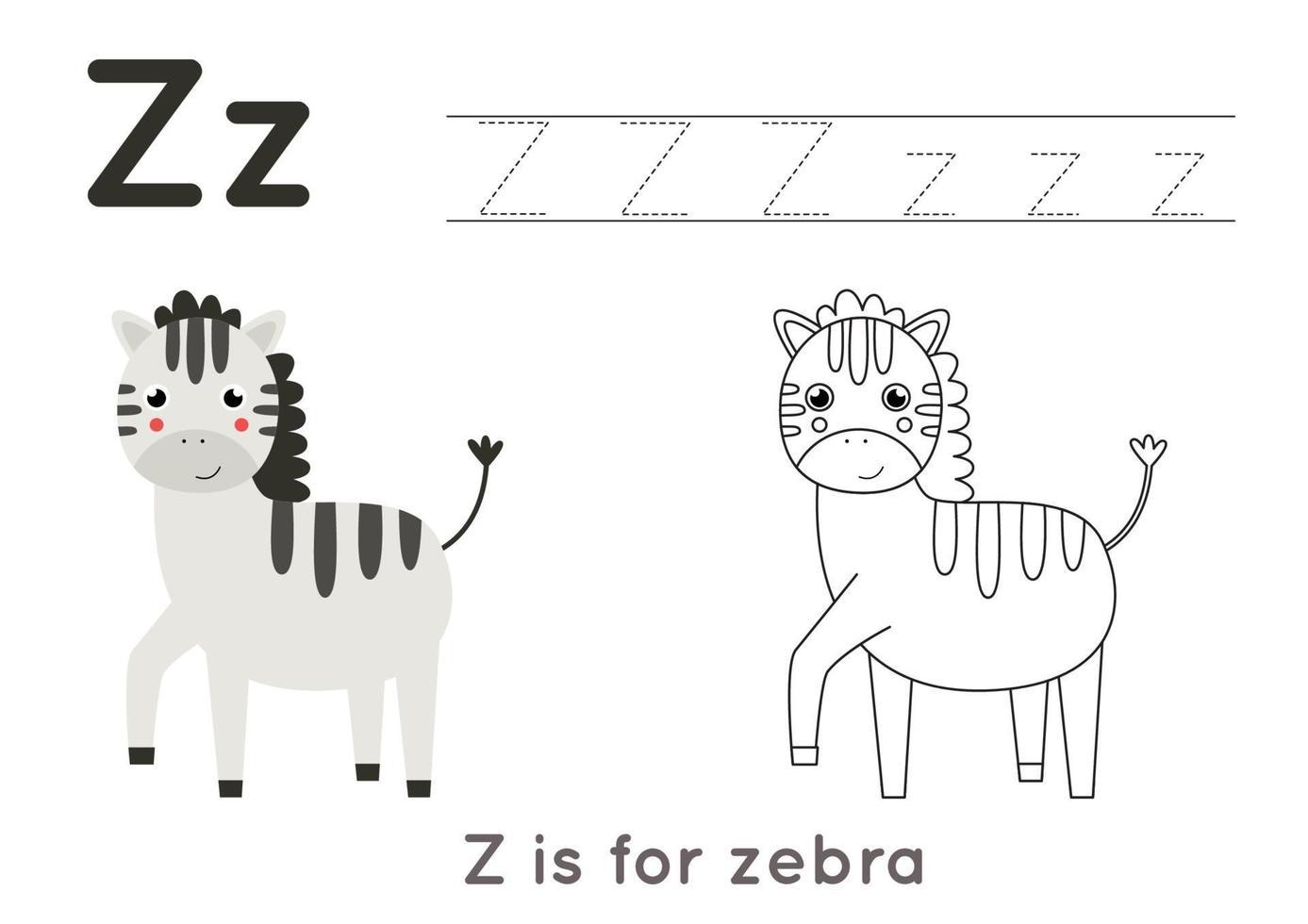 pagina da colorare e ricalcare con la lettera ze zebra simpatico cartone animato. vettore