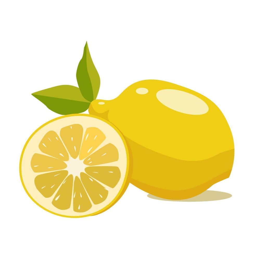 limone, una fonte di vitamina c. cibo dietetico. moderna illustrazione vettoriale su uno sfondo bianco
