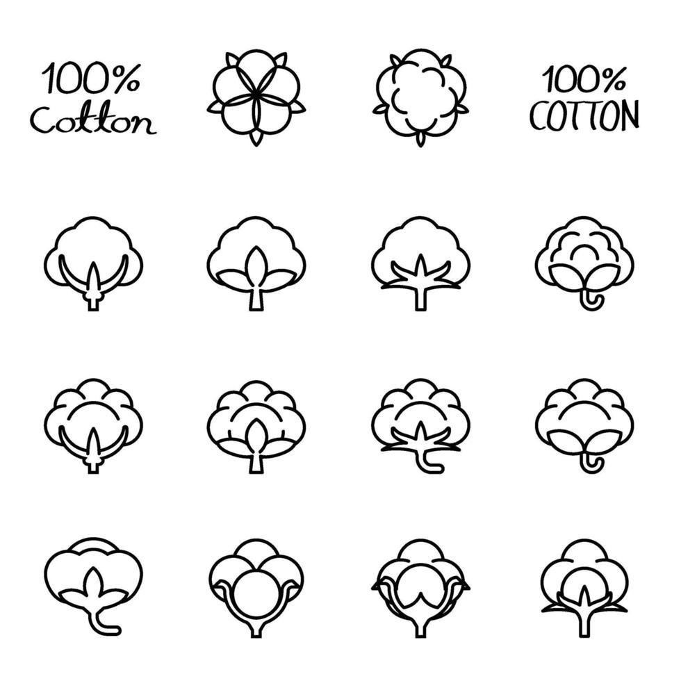 immagine vettoriale icona fiore di cotone isolato.