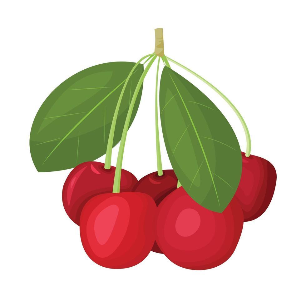 un ramo di una ciliegia rossa matura, isolato su uno sfondo bianco. belle bacche succose. elemento di design di utensili da cucina. illustrazione vettoriale